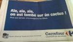 Cactus chez Carrefour