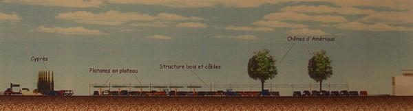 Carrefour sainte genevieve des bois allee centrale en coupe
