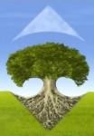 Carrefour thailand arbre