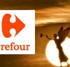 L'après Carrefour : que sont devenus Guillaume Vicaire, Florence Baranes-Cohen et… ?