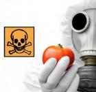 Enquête ARTE : « Notre poison quotidien »