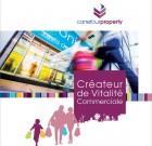 Carrefour Property vend 25 sites en France (55000 m²)