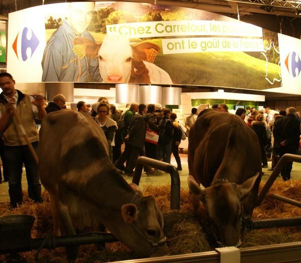 carrefour salon agriculture vache