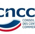 L'activité des centres commerciaux repart à la hausse : l'effet Macron?