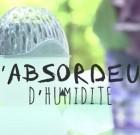"Designed by Carrefour… un absorbeur ""absordeur"""
